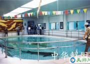 宜昌中华鲟研究所2019年成功孵化中华鲟子二代苗种13.3万尾,数量创历史之最