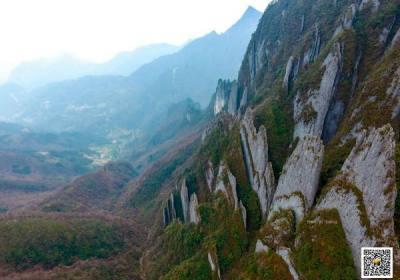 神农架太和山旅游,猕猴观赏型原生态风景区