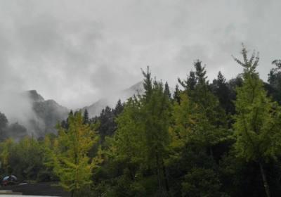 湖北的自然保护区有多少个?