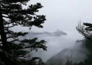 神农架生态旅游区恢复开放,2020年五一前7大景区对所有人免费开放