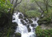 神农架世界地质公园包含哪几个园区