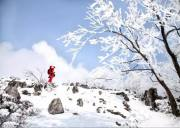 百里荒一日游避暑休闲/百里荒滑雪(山楂树之恋外景地,最美草原百里荒)