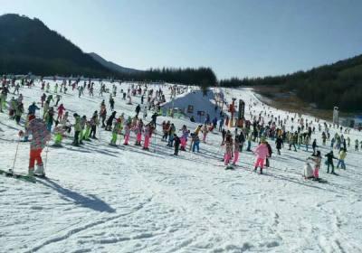 天冷了去神农架滑雪吧,宜昌到神农架国际滑雪场二日游直通车天天发团