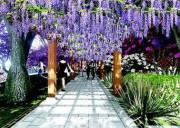 宜昌将建设成为三峡旅游区域的花园城市