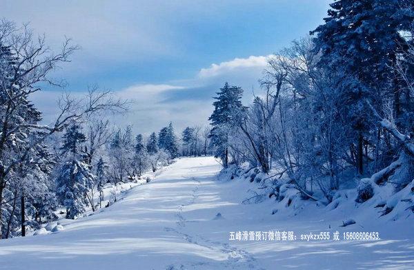 五峰滑雪场规划图6