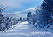 宜昌到五峰湾潭国际滑雪场一日游线路12月中旬将发班