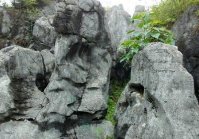 宜昌旅游景点宜都奥陶纪石林,亿年的石头会说话