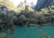 中亚楠木林风景区4月18日恢复营业,宜昌休闲旅游楠木林