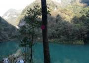 宜昌旅游中亚楠木林风景区全线升级,新增楠木展览馆