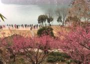 世外桃源,宜昌三峡西陵峡畔的宁静之地