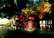 宜昌旅游节目跨越千年的土家吊脚楼在宜昌博物馆上线