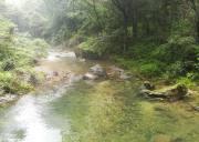 清凉避暑地三峡南津关,欢迎到宜昌南津关大峡谷森林氧吧