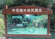 宜昌夷陵区中亚楠木林风景区,野生楠木观赏公园、高端修心养生度假目的地
