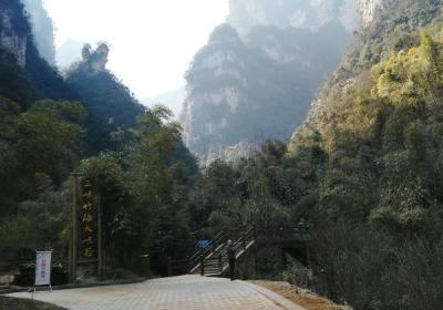 三峡竹海旅游直通车在哪发车,宜昌市区宜昌东站去三峡竹海乘车攻略