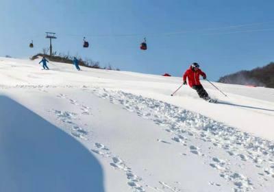 华中亚布力巴东绿葱坡,宜昌到绿葱坡滑雪一日游天天发团