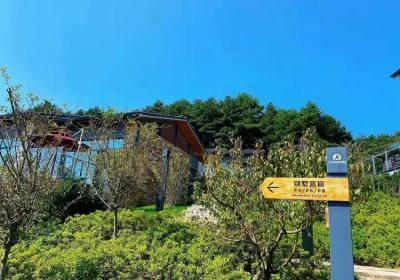 宜昌世界旅游名城建设期待鄂旅投的深入合作