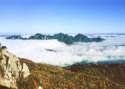 三峡云顶大老岭,宜昌海拔最高的地方