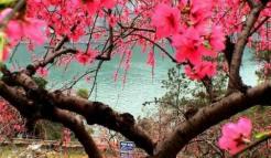西陵峡风景区图片_世外桃源|三游洞|快乐谷|三峡猴溪_宜昌旅游景点照片