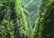 宜昌五峰后河生态旅游区 后河天门峡景区