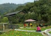 三峡鸣翠谷旅游度假风景区 宜昌旅游景点鸣翠谷