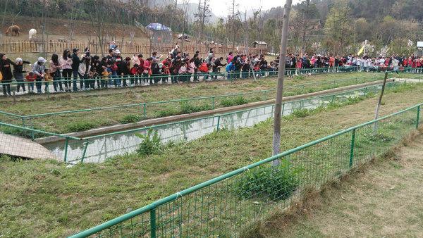 宜昌九凤谷和方山正式晋级4A景区,宜昌旅游共有4A景区17家